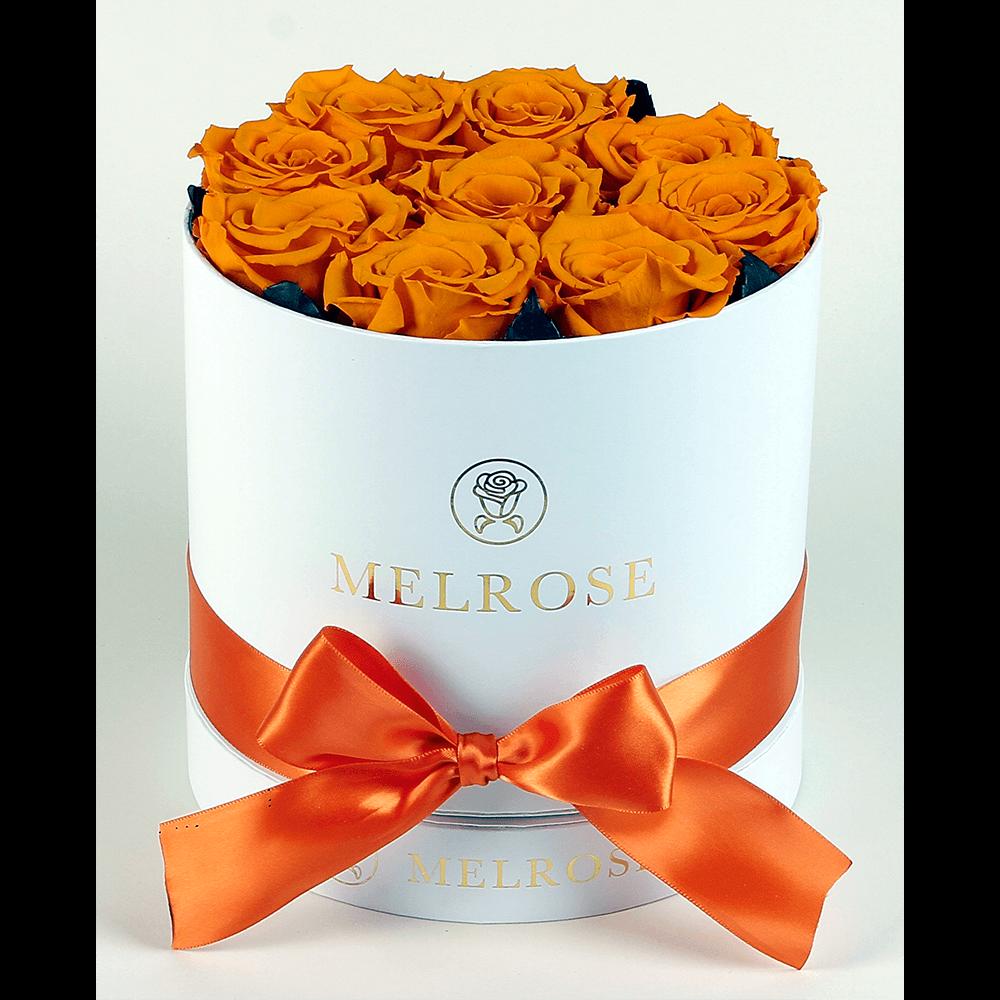 The melrose simple round box orange